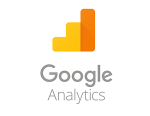 rankvira-digital-marketing-services_google-analytics